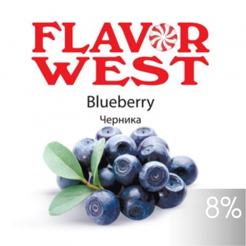 FW Blueberry / Черника 10мл