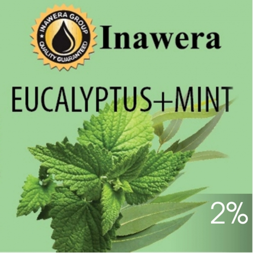 INW Eucalyptus + Mint / Эвкалипт + Мята 10мл